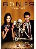 se0268 : ซีรีย์ฝรั่ง Bones Season 3 พลิกซากปมมรณะ ปี 3 [ซับไทย] 4 แผ่นจบ