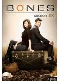 se0796 : ซีรีย์ฝรั่ง Bones Season 6 พลิกซากปมมรณะ ปี 6 [ซับไทย] 12 แผ่นจบ