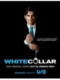 se0516 : ซีรีย์ฝรั่ง White Collar Season 1 [ซับไทย] 7 แผ่นจบ