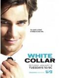 se0710 : ซีรีย์ฝรั่ง White Collar Season 2 [ซับไทย] 9 แผ่นจบ