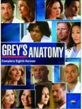 se0891 : ซีรีย์ฝรั่ง Grey's Anatomy Season 8 แพทย์มือใหม่หัวใจเกินร้อย ปี 8 [ซับไทย] 6 แผ่นจบ