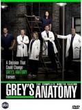 se0992 : ซีรีย์ฝรั่ง Grey's Anatomy Season 9 แพทย์มือใหม่หัวใจเกินร้อย ปี 9 [ซับไทย] 6 แผ่นจบ