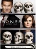 se0924: ซีรีย์ฝรั่ง BONES Season 4 พลิกซากปมมรณะ ปี4 [เสียงไทย] 7 แผ่นจบ