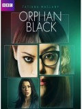 se0971 : ซีรีย์ฝรั่ง Orphan Black Season 1 [พากย์ไทย+ซับไทย] DVD 3 แผ่นจบ