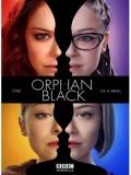 se1127 :ซีรีย์ฝรั่ง Orphan Black Season 2 [เสียงไทย+บรรยายไทย] 3 แผ่นจบ