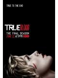 se1192 : ซีรีย์ฝรั่ง True Blood Season 7 [The Final Season] [เสียงeng+บรรยายไทย] 4 แผ่นจบ