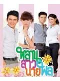 st0870: ละครไทย  หลานสาวนายพล   4 แผ่นจบ