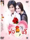 st0997 ละครไทย พ่อไก่แจ้ (หลุยส์ สก๊อต+ จิตตาภา แจ่มปฐม) 4 แผ่น