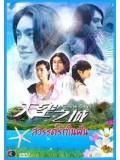 TW085 : ซีรีย์ไต้หวัน City of Sky สวรรค์รักในฝัน จากแดนฟ้า มาหารัก [พากย์ไทย] 4 แผ่นจบ