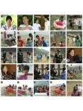 TV071 : Family Outing Ep78 ([X-Files) ซับไทย ตอนพิเศษตอนจบของปี 2009 DVD 1 แผ่น